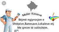 Moler 045535069