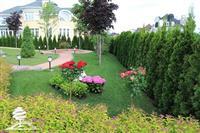 A-A Garden