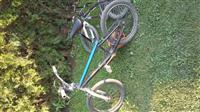 Bicikell nga gjermania