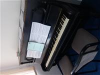 Shes Pianon dhe Sintat