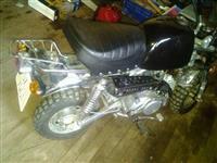 Motorr 50