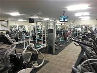 Paisje Fitnesi (Techno Gym, Matrix, Life Fitnes)